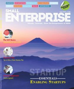 Small Enterprise
