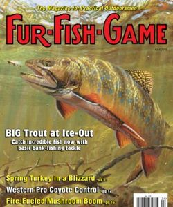 FUR-FISH-GAME