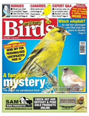 Cage Amp Aviary Birds Magazine July 26 2017 Issue Get Your